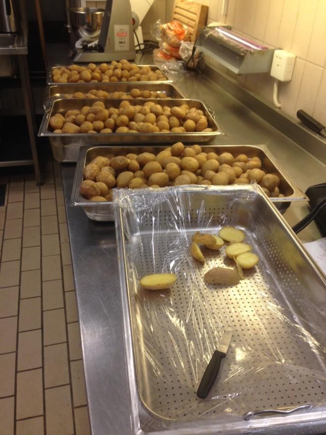Quantos quilos de batatas? Alguém adivinha?